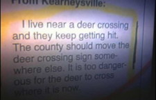 Deer crossing Sign Shift [Must see]