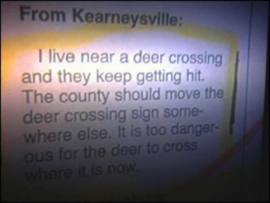 deer_crossing funny image of the day