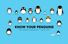 #PenguinAwarenessDay Trends in Twitter: Cutest Day Ever